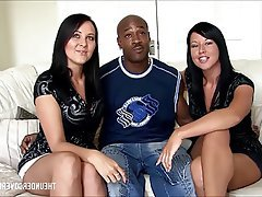 Amatér, Británie, Paroháč, Smíšené rasy